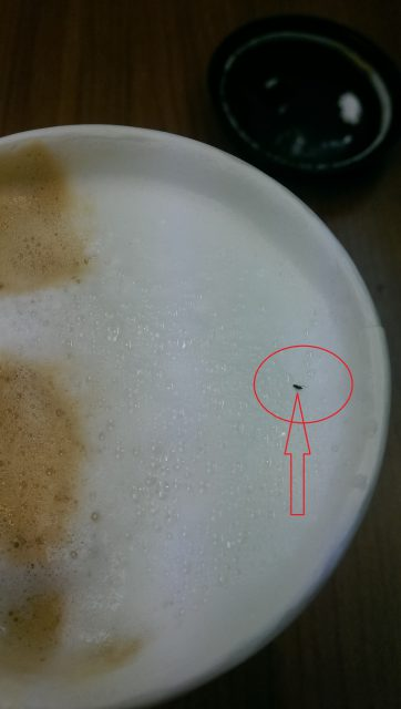 IMAG1353-1 [黑特] 萊爾富Hi-Life cafe 咖啡有蟲 [黑特] 萊爾富Hi-Life cafe 咖啡有蟲 IMAG1353 1 362x640