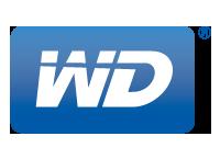 wd 2016 XFastest 改裝、正妹、競標 中部網聚活動 2016 XFastest 改裝、正妹、競標 中部網聚活動 WD