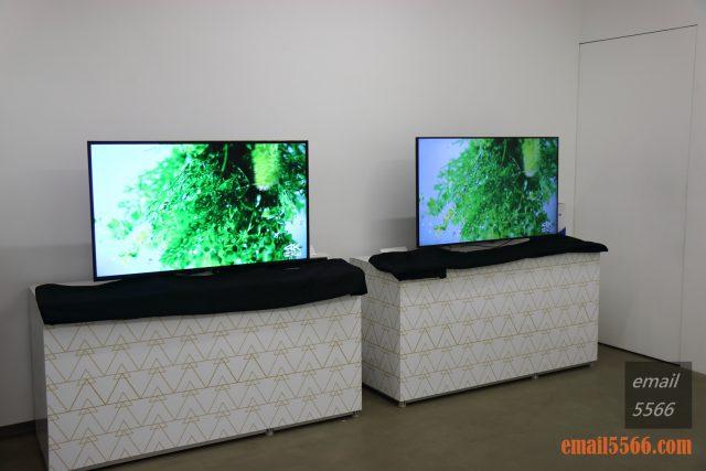 驚艷6原色 色彩極致之美 Panasonic HX750/900、HZ1500 電視體驗會-B區 進階6原色